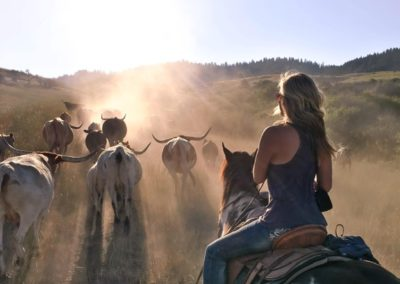 Girl cattle drive
